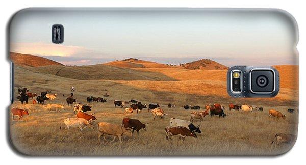 Longhorns Galaxy S5 Case