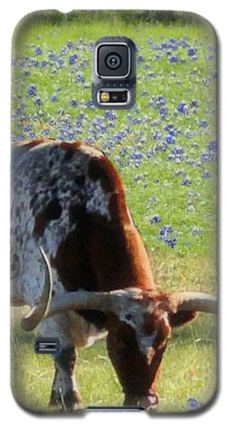 Longhorns In The Bluebonnets Galaxy S5 Case by Janette Boyd