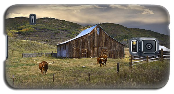 Longhorns On The Road To Steamboat Lake Galaxy S5 Case
