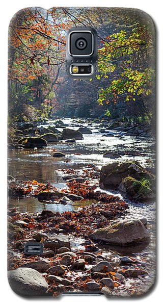 Longing For Home Galaxy S5 Case by Karen Wiles
