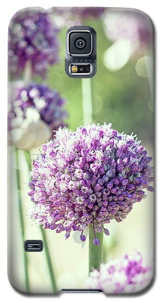Galaxy S5 Case featuring the photograph Longing For Summer Days by Linda Lees