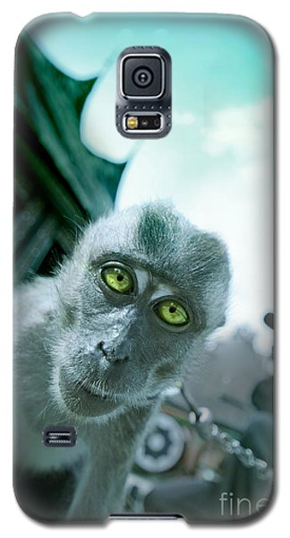 Look Into My Eyes Galaxy S5 Case by Charuhas Images