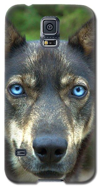 Look Into My Eyes... Galaxy S5 Case