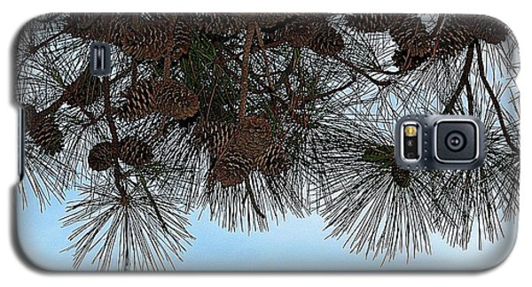 Galaxy S5 Case featuring the photograph Look Up- Fine Art by KayeCee Spain