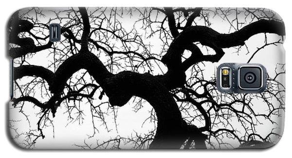 Look Up Galaxy S5 Case