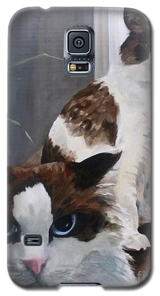 Galaxy S5 Case featuring the painting Look Who Is Grumpy Now by Diane Daigle