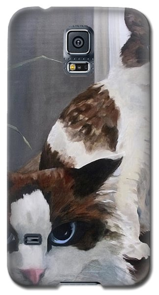 Look Who Is Grumpy Now Galaxy S5 Case by Diane Daigle