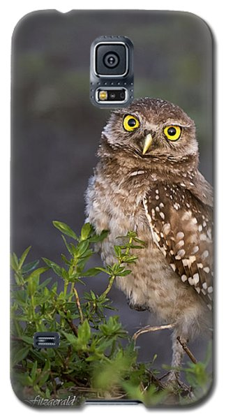 Look Who Is Up Early Galaxy S5 Case