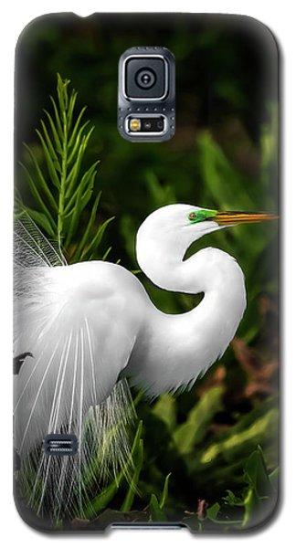 Lookin' For Love Galaxy S5 Case