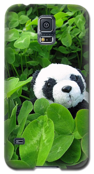 Galaxy S5 Case featuring the photograph Looking For A Lucky Clover by Ausra Huntington nee Paulauskaite