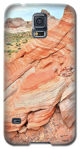 Galaxy S5 Case featuring the photograph Looking South In Valley Of Fire by Ray Mathis