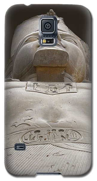 Looking Up At Rameses Galaxy S5 Case