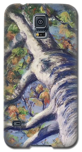 Looking Up - Fall Galaxy S5 Case