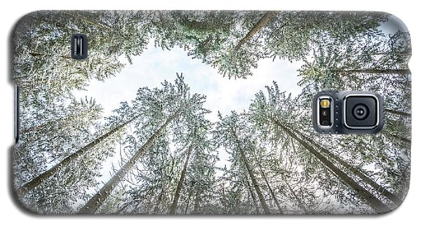 Galaxy S5 Case featuring the photograph Looking Up In The Forest by Hannes Cmarits