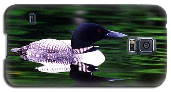 Loon On The Lake Galaxy S5 Case