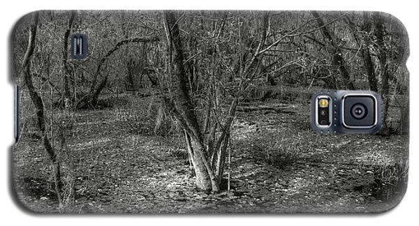 Loop Road Swamp #3 Galaxy S5 Case