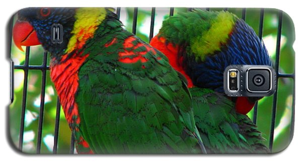 Galaxy S5 Case featuring the photograph Lory by Greg Patzer