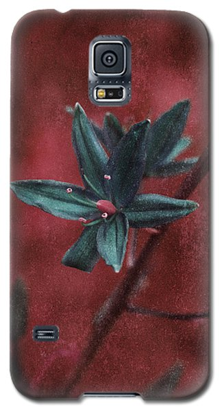 Lost Among Weeds Galaxy S5 Case