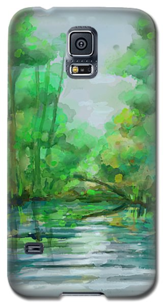 Lost In Colors  Galaxy S5 Case