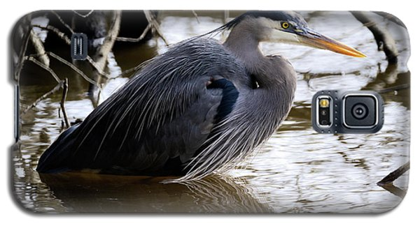 Galaxy S5 Case featuring the photograph Lost Lagoon Great Blue Heron 1 by Terry Elniski