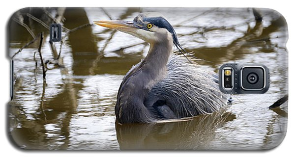 Galaxy S5 Case featuring the photograph Lost Lagoon Great Blue Heron 2 by Terry Elniski