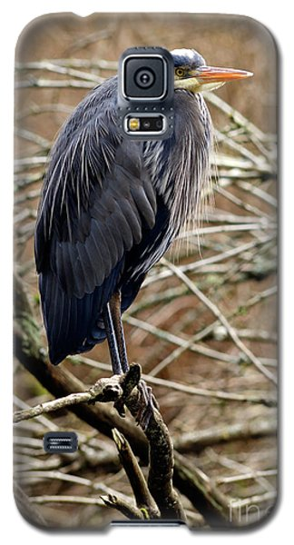 Galaxy S5 Case featuring the photograph Lost Lagoon Great Blue Heron 4 by Terry Elniski