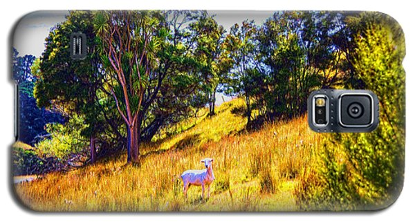 Galaxy S5 Case featuring the photograph Lost Lamb by Rick Bragan