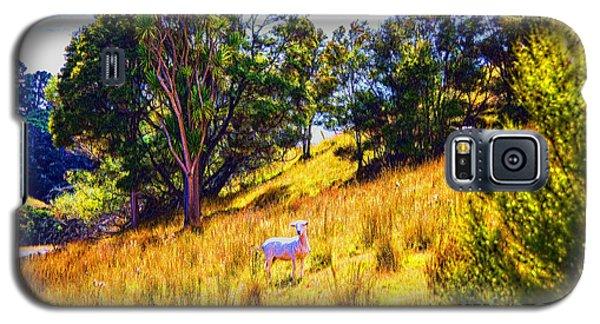 Lost Lamb Galaxy S5 Case by Rick Bragan