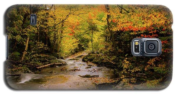 Lost River Fall Colors Galaxy S5 Case