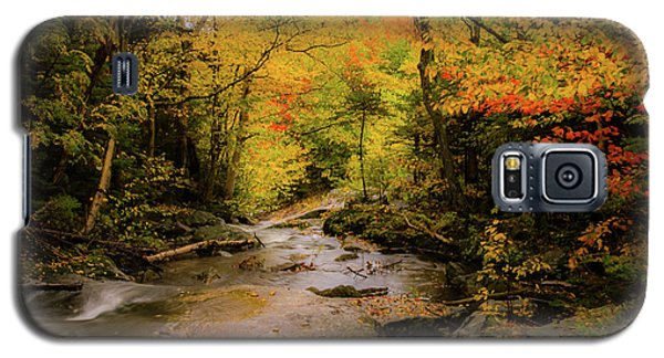 Lost River Fall Colors Galaxy S5 Case