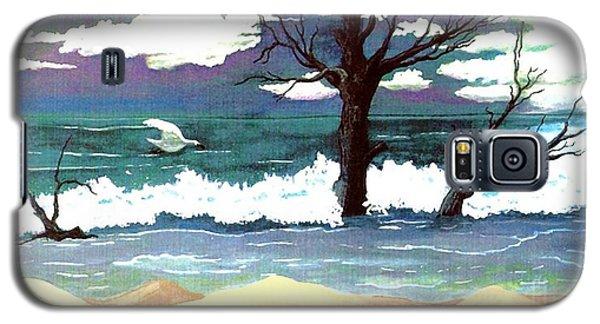 Lost Swan Galaxy S5 Case