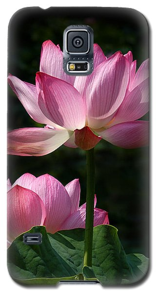 Lotus Beauties--upstaged Dl048 Galaxy S5 Case
