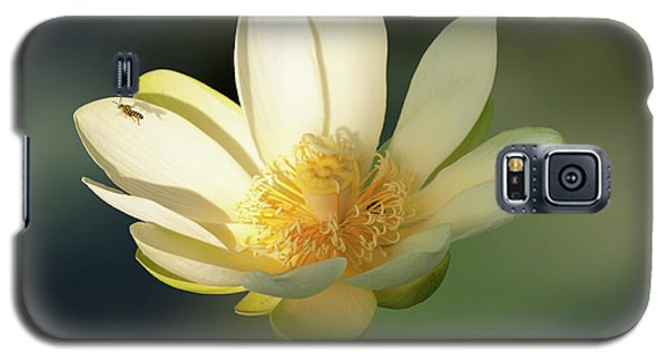 Galaxy S5 Case featuring the photograph Lotus Beauty by Carolyn Dalessandro