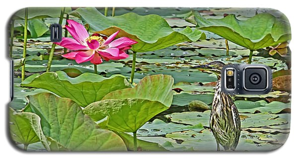 Lotus Blossom And Heron Galaxy S5 Case by HH Photography of Florida