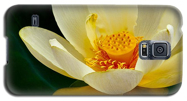 Galaxy S5 Case featuring the photograph Lotus Blossom by Tyson and Kathy Smith