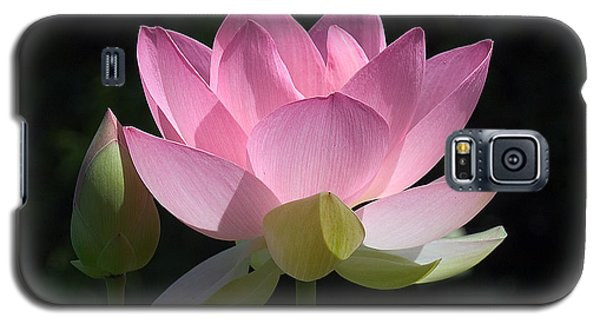 Lotus Bud--snuggle Bud Dl005 Galaxy S5 Case