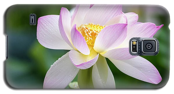 Galaxy S5 Case featuring the photograph Lotus by Edward Kreis