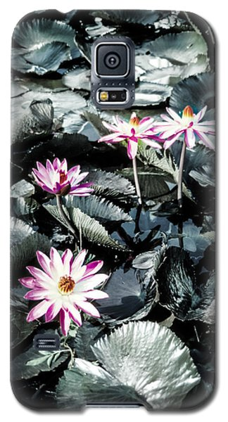 Galaxy S5 Case featuring the photograph Lotus Flowers by Randy Sylvia