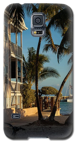 Louie's Backyard Galaxy S5 Case by Ed Gleichman
