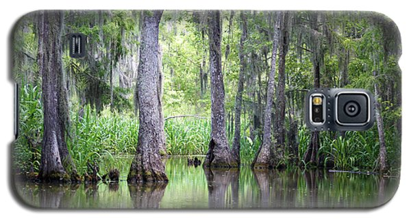 Louisiana Swamp 5 Galaxy S5 Case