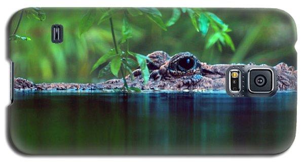 Louisiana Swimming Instructor  Galaxy S5 Case