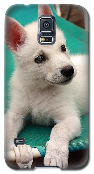 Galaxy S5 Case featuring the photograph Lounging Puppy by Tyra  OBryant