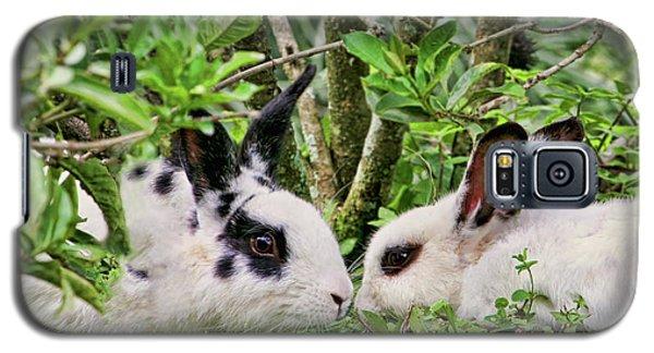 Love Bunnies In Costa Rica Galaxy S5 Case