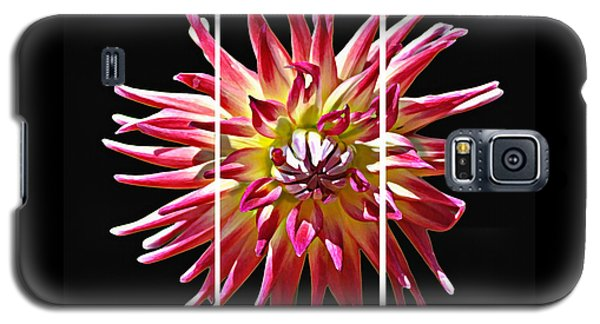Galaxy S5 Case featuring the photograph Love Generosity Hope by Diane E Berry