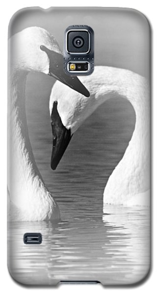 Love In Black And White Galaxy S5 Case