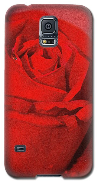 Galaxy S5 Case featuring the photograph Love Is A Red Rose With Raindrops by Diane Schuster