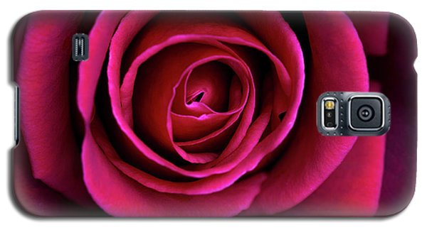 Galaxy S5 Case featuring the photograph Love Is A Rose by Linda Lees