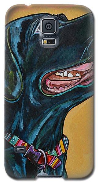 Love Lab Galaxy S5 Case by Patti Schermerhorn