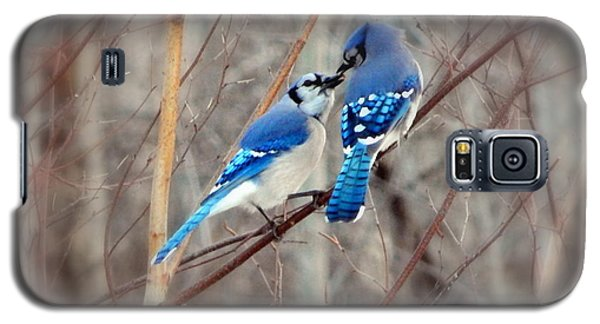 Bluejay Galaxy S5 Case - Love Me Tender by Karen Cook