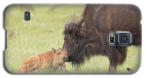 Love My Mama Galaxy S5 Case